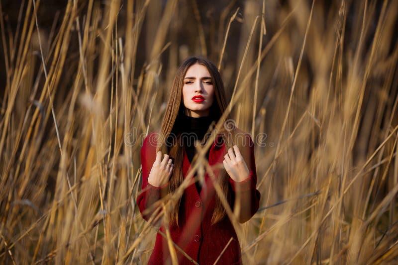 Jovem mulher feliz livre Fêmea bonita com cabelo saudável longo que aprecia a luz do sol no parque no por do sol Mola, outono foto de stock