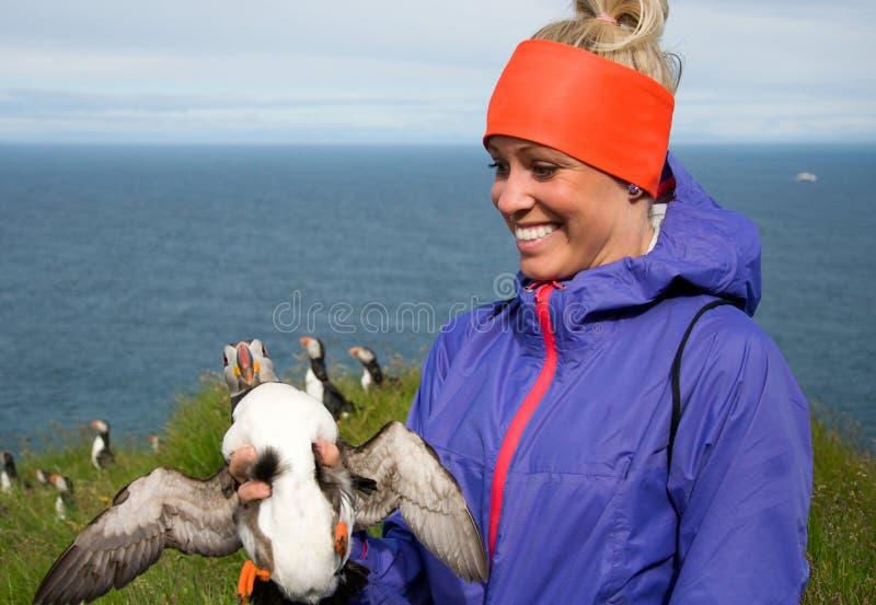 Jovem mulher feliz que guarda o papagaio-do-mar em Islândia imagens de stock