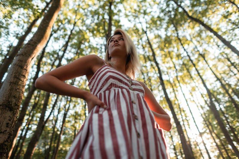 Jovem mulher glamoroso bonita com cabelo louro em um vestido cor-de-rosa listrado elegante que levanta no fundo do árvores fotografia de stock