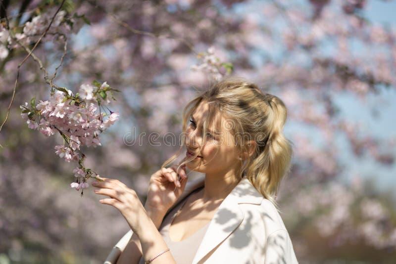 Jovem mulher loura bonita no parque de Sakura Cherry Blossom na mola que aprecia a natureza e o tempo livre durante ela que viaja fotografia de stock