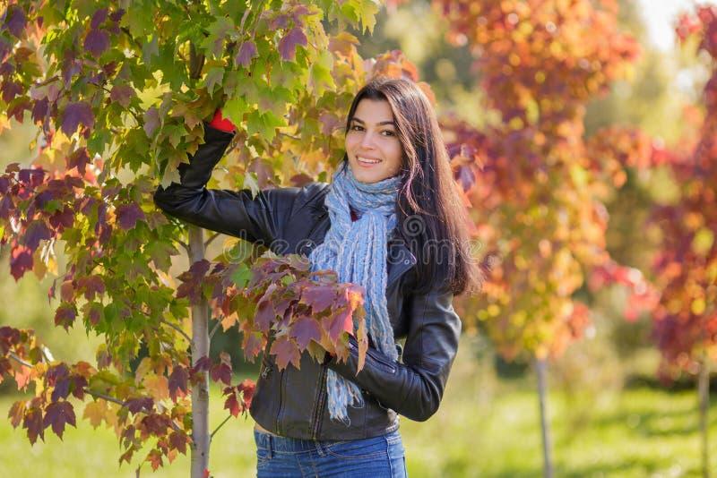 Jovem mulher no parque do outono imagens de stock