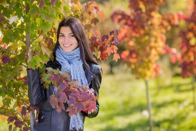 Jovem mulher no parque do outono fotografia de stock royalty free