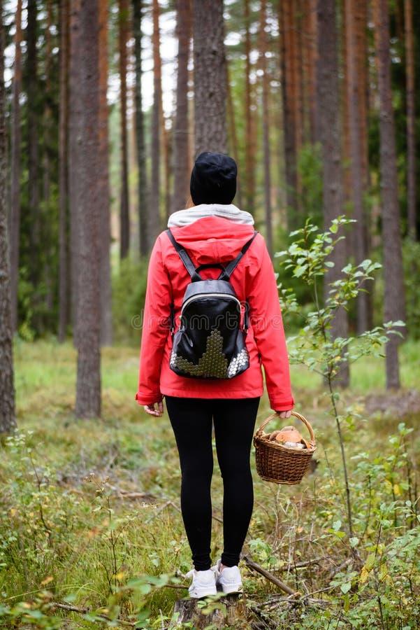 jovem mulher no revestimento vermelho que aprecia a natureza na floresta Letónia fotos de stock royalty free