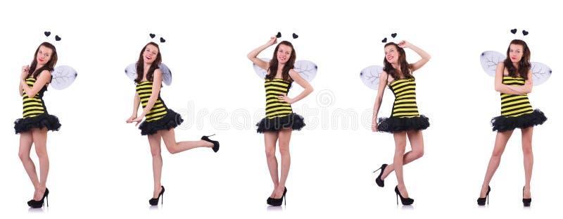 Jovem mulher no traje da abelha isolado no branco imagens de stock royalty free