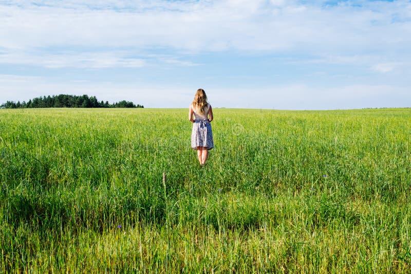Jovem mulher no vestido que anda ao longo do campo de cereal fotos de stock royalty free