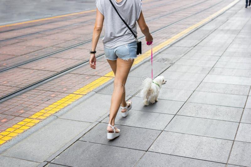 Jovem mulher que anda abaixo da rua da cidade imagem de stock
