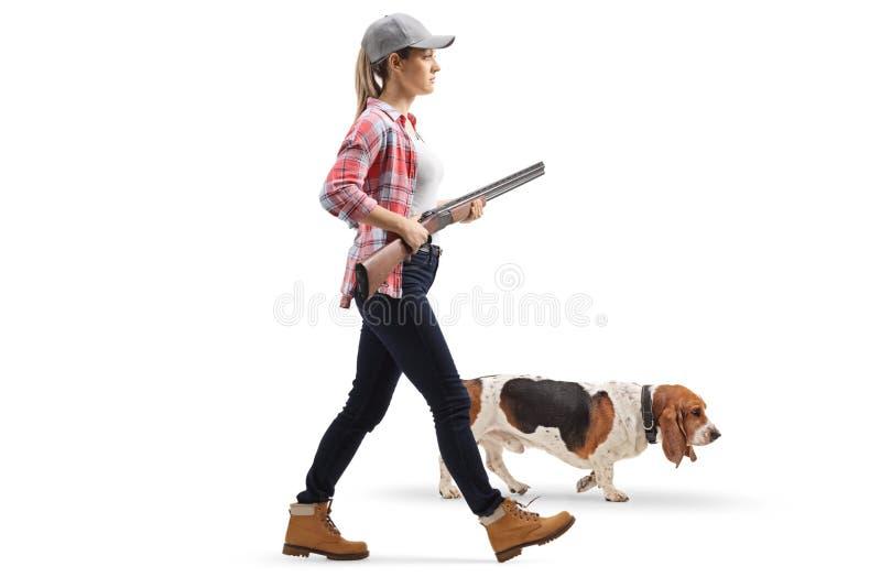 Jovem mulher que anda com uma espingarda e um cão de cão do basset fotos de stock royalty free