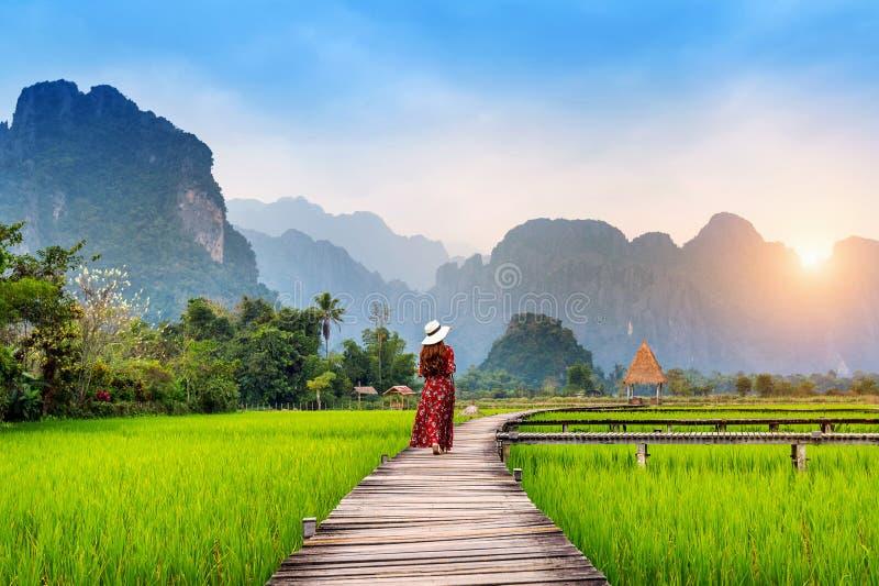 Jovem mulher que anda no trajeto de madeira com campo verde do arroz em Vang Vieng, Laos fotos de stock