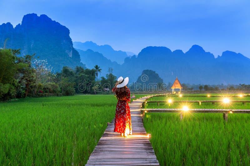 Jovem mulher que anda no trajeto de madeira com campo verde do arroz em Vang Vieng, Laos imagem de stock