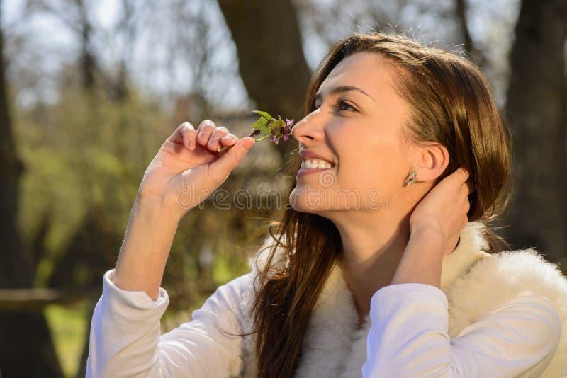 Jovem mulher que cheira a flor selvagem fotografia de stock royalty free