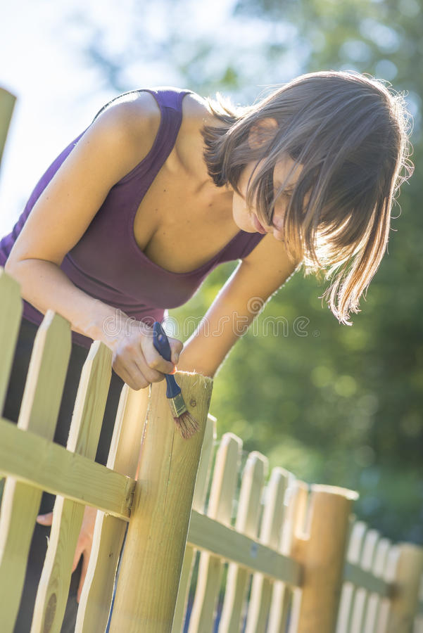 Jovem mulher que enverniza uma cerca de madeira foto de stock