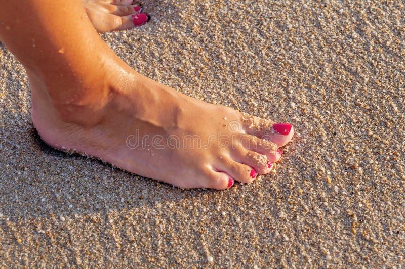 Jovem mulher que está apenas na praia no fim do por do sol imagem de stock royalty free