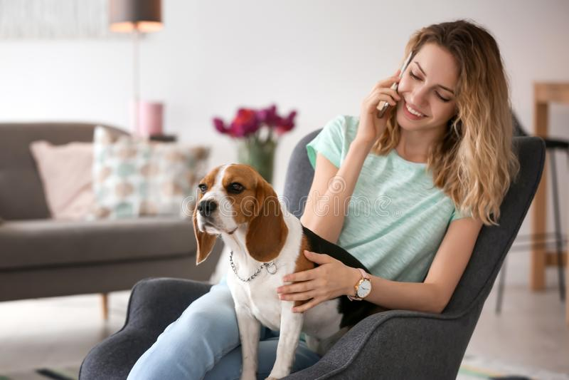 Jovem mulher que fala no telefone ao afagar seu cão fotografia de stock royalty free