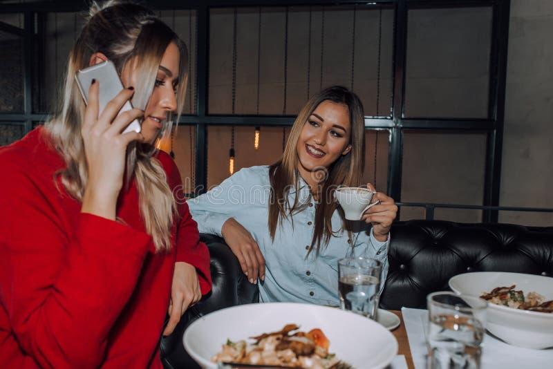 Jovem mulher que fala no telefone durante o almoço com seu amigo imagem de stock royalty free