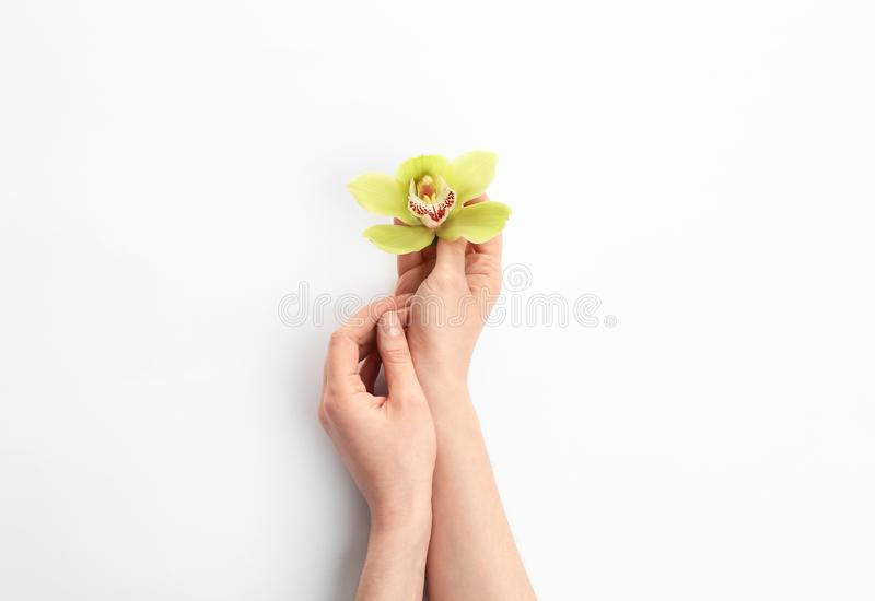 Jovem mulher que guarda a flor bonita da orquídea no branco foto de stock royalty free