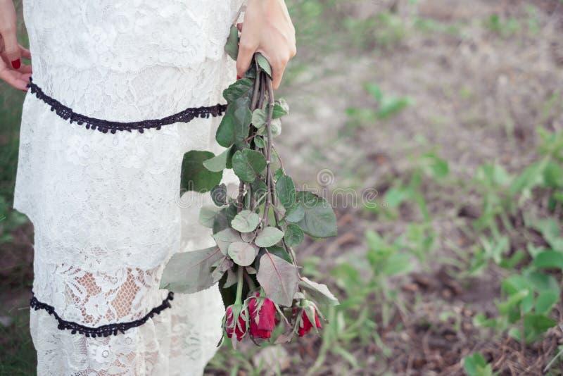 Jovem mulher que guarda flores da rosa do vermelho imagem de stock royalty free
