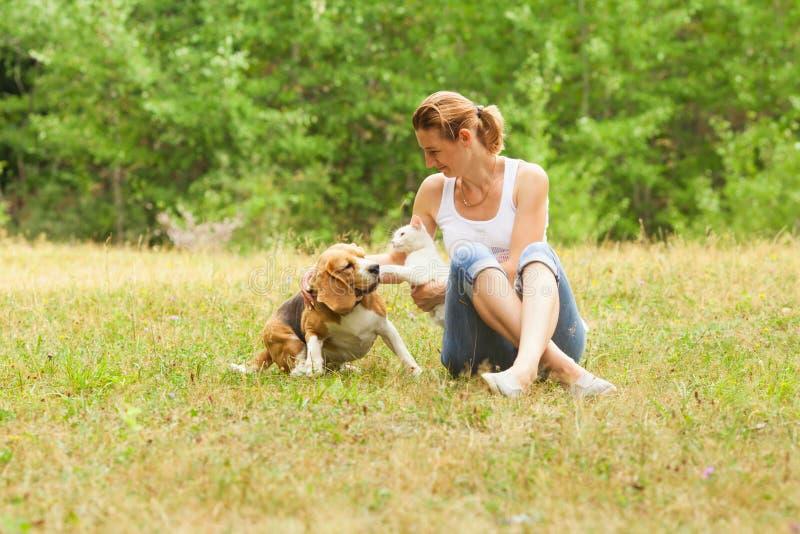Jovem mulher que joga com seus animais de estimação que sentam-se na grama fotografia de stock