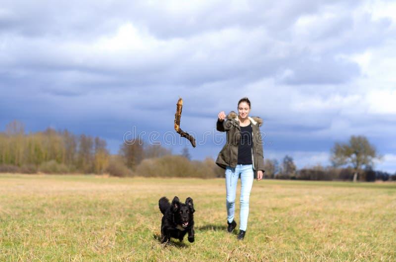 Jovem mulher que joga uma vara para seu cão para a perseguição fotografia de stock royalty free