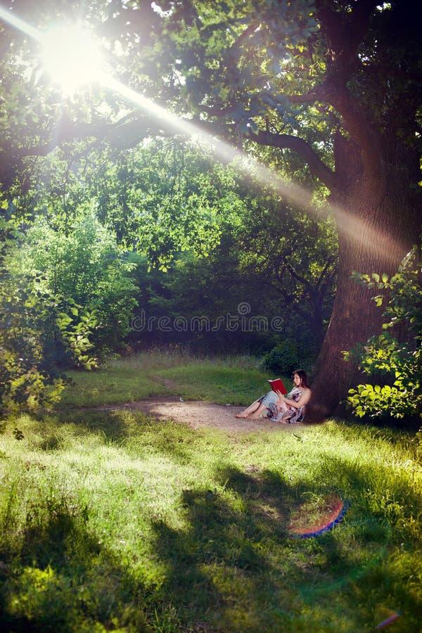 Jovem mulher que lê um livro sob a árvore fotos de stock