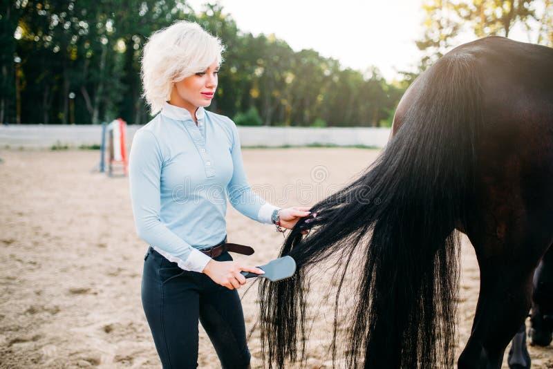 Jovem mulher que penteia a cauda do cavalo imagens de stock