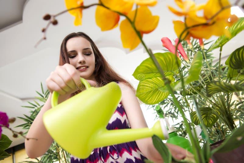 A jovem mulher que toma das plantas home imagens de stock royalty free