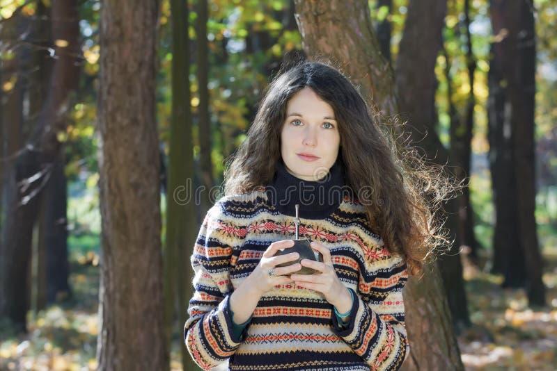 A jovem mulher que veste flocos de neve feitos malha modela a camiseta de lã e guardar a bebida quente do companheiro do yerba imagem de stock royalty free