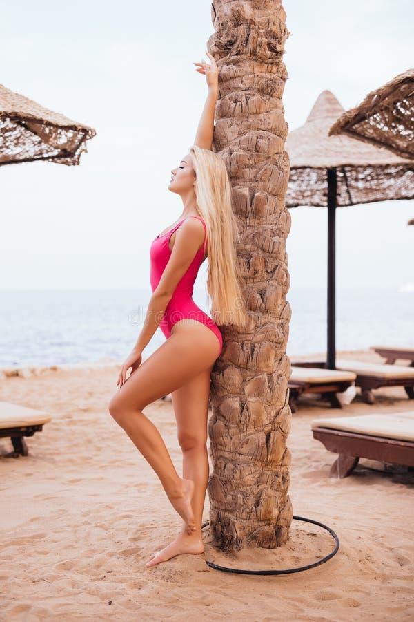 Jovem mulher que veste o roupa de banho cor-de-rosa que levanta sob a palmeira sobre a opinião do mar na praia tropical do recurs fotografia de stock