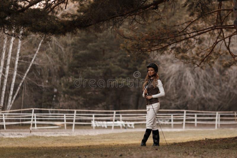 A jovem mulher segura elegante e bonita que veste o equipamento à moda do jóquei é de passeio e fazendo o adestramento fotografia de stock