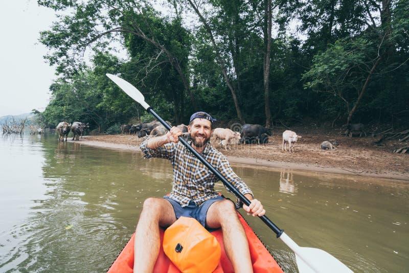 Jovem portador caucasiano remando em kayak no rio Mekong com búfalos d'água em segundo plano, Laos fotos de stock royalty free