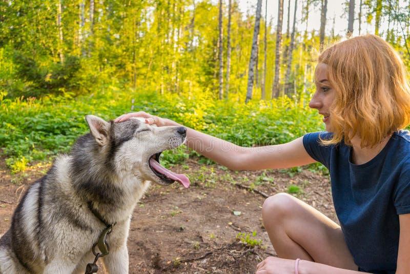 Jovem senhora bonita com seu cão bonito adorável do hask siberian fotografia de stock