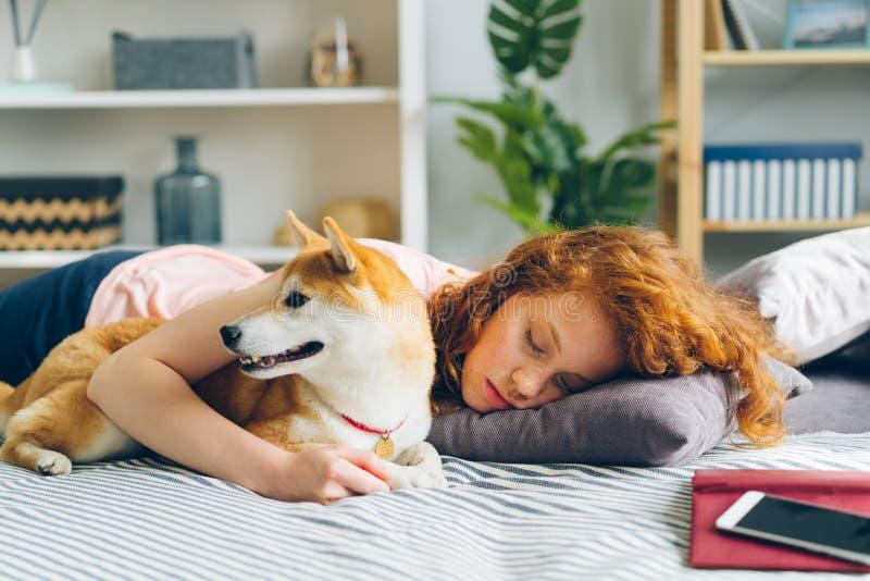 Jovem senhora bonita que dorme no sofá em casa que abraça o cachorrinho adorável foto de stock