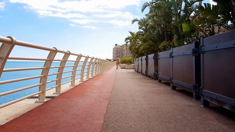 Jovem senhora que anda perto do mar ao longo do litoral plantado com palmas, recurso rico fotografia de stock royalty free