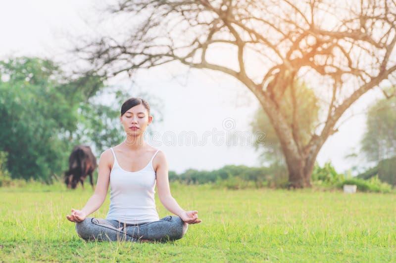 Jovem senhora que faz o exercício da ioga na área exterior do campo verde que mostra a calma calma na mente da meditação fotografia de stock royalty free