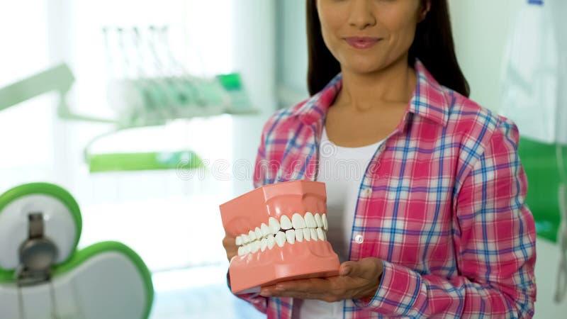 Jovem senhora que guarda o modelo 3d da maxila, o conceito dos cuidados dentários e a higiene oral foto de stock royalty free