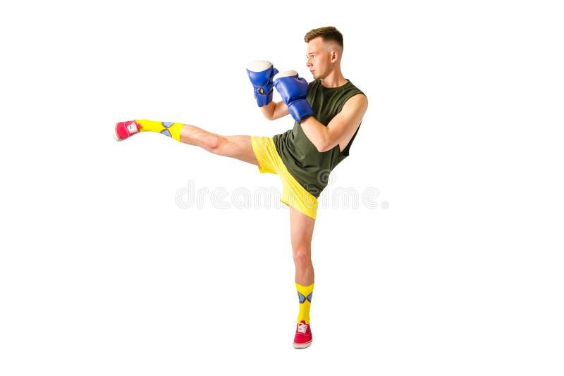 Jovens boxer em luvas de boxe azul isoladas em um fundo branco foto de stock royalty free