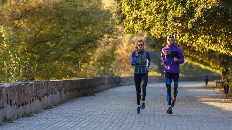 Jovens casais correndo no parque de outono pela manhã imagem de stock