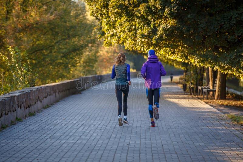 Jovens casais correndo no parque de outono pela manhã fotografia de stock royalty free