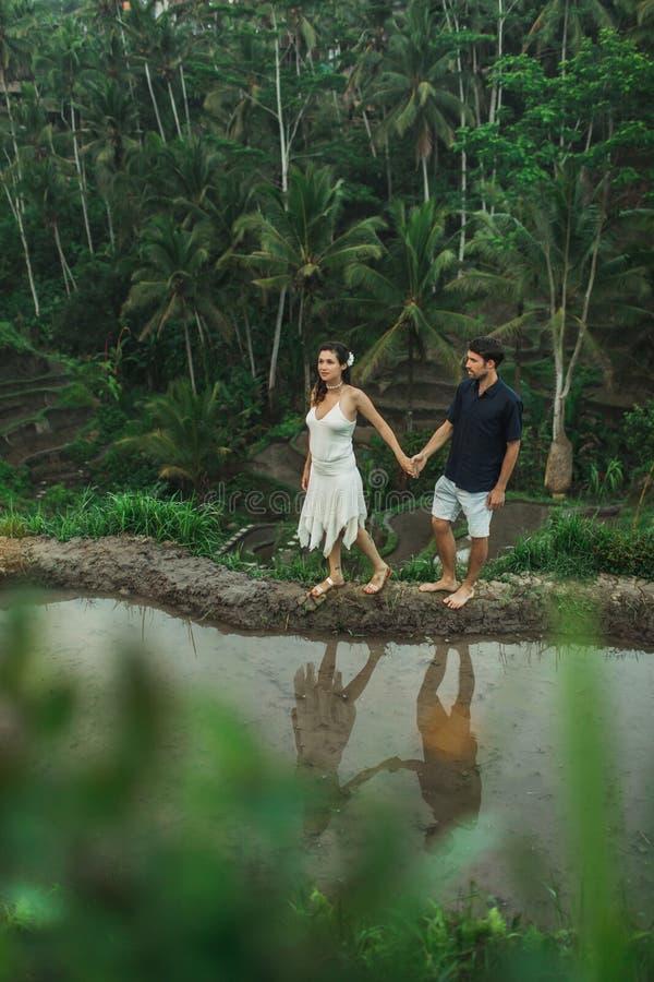 Jovens casais felizes com uma vista incrível de terraços de arroz Ubud na manhã fotografia de stock