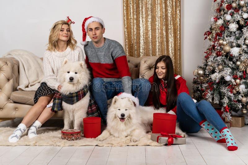 Jovens felizes em chapéus de Santa e em dois cães do wite em chapéus de Santa também imagem de stock royalty free