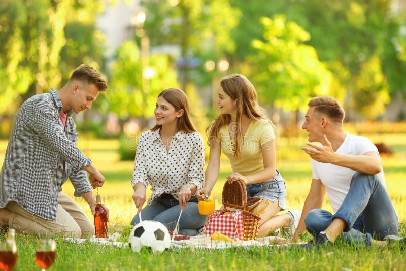 Jovens gostam de piquenique no verão imagem de stock royalty free
