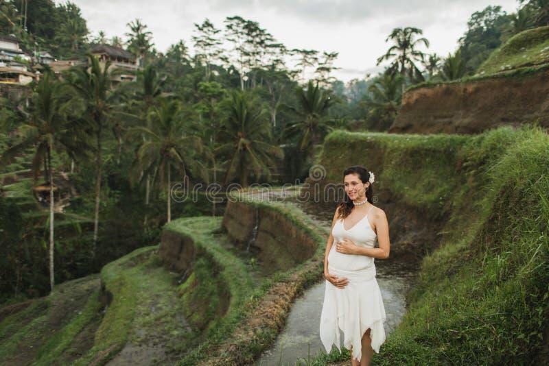 Jovens grávidas de vestido branco tendo em vista os terraços de arroz Bali na manhã imagem de stock