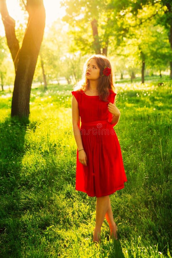 Jovens mulheres bonitas no vestido vermelho backlit pelo por do sol na frente das árvores verdes imagem de stock royalty free