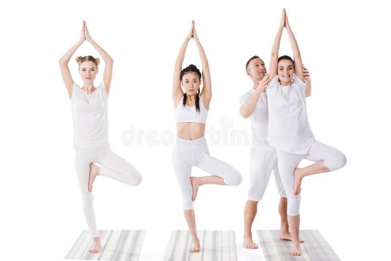 Jovens mulheres de ajuda do instrutor que praticam a pose da árvore da ioga imagens de stock