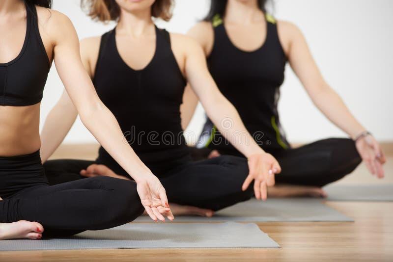 Jovens mulheres na classe da ioga, pose de relaxamento dos lótus da meditação Copie o espa?o Clube saudável do estilo de vida e d imagem de stock