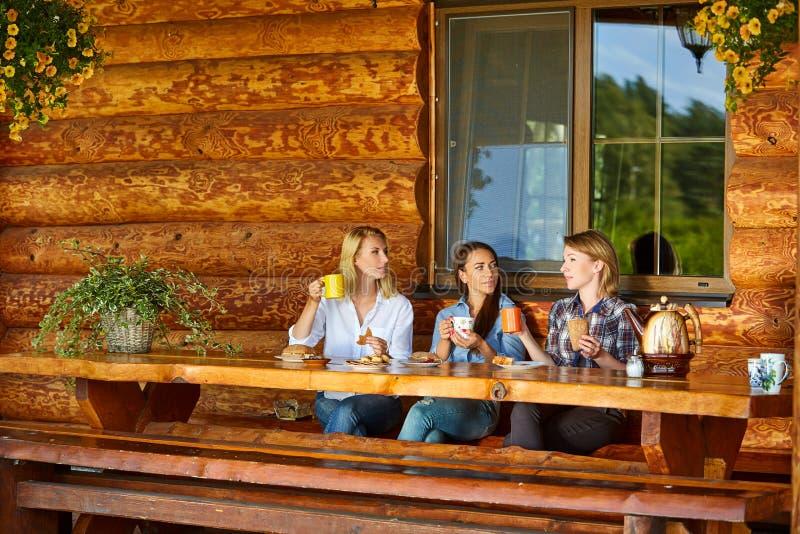 Jovens mulheres que bebem o chá foto de stock