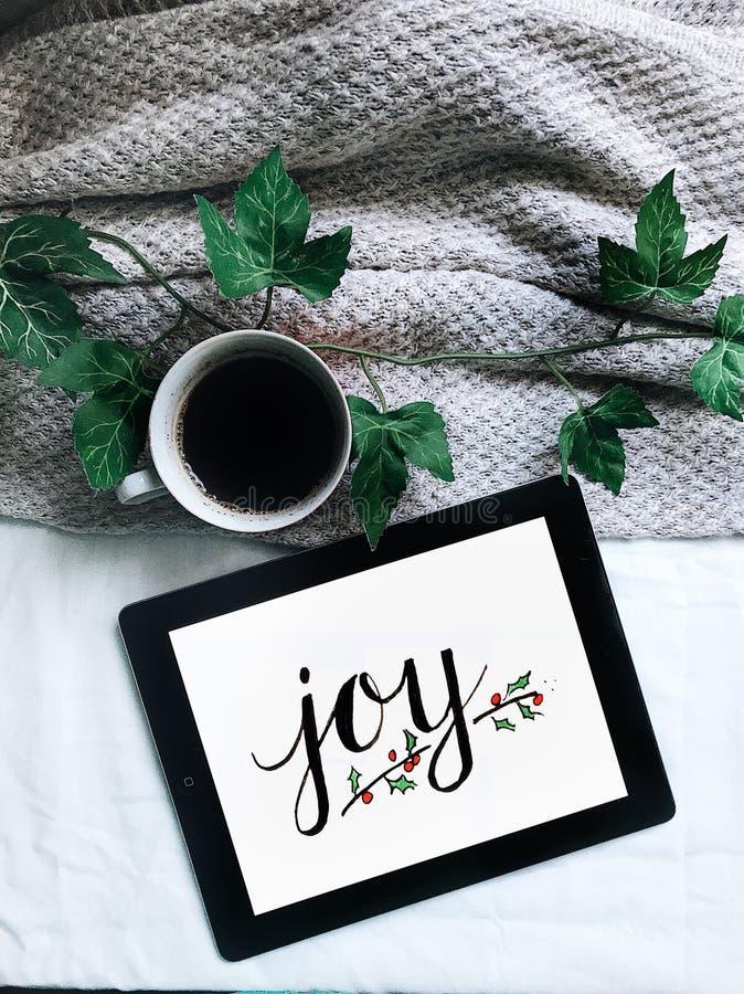 Joy royalty free stock photos