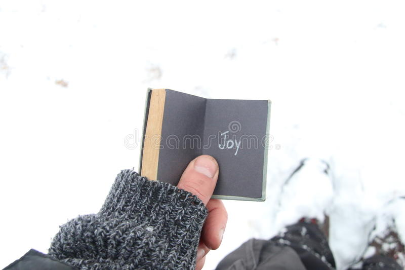 Joy or winter idea. Vintage book with inscription. Vintage book with inscription Joy. On the background of snow stock images