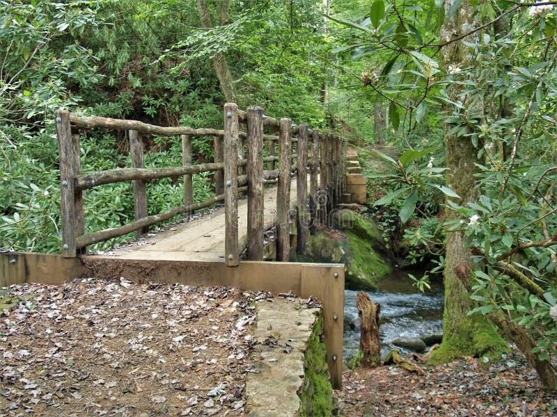Joyce Kilmer Memorial Forest Wooden fotbro arkivbild
