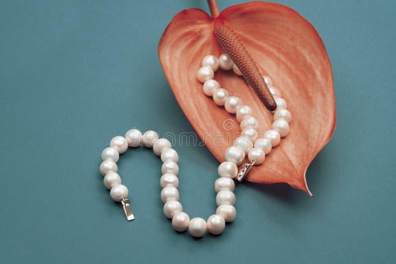 Joyería, collar hecho de la perla blanca y brillante fotos de archivo libres de regalías