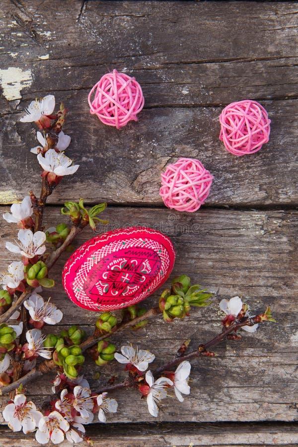 Joyeuses Pâques avec des oeufs et des fleurs de ressort photo stock